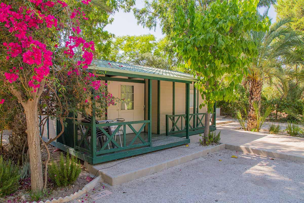 palmeras crevillent alicante camping bungalow