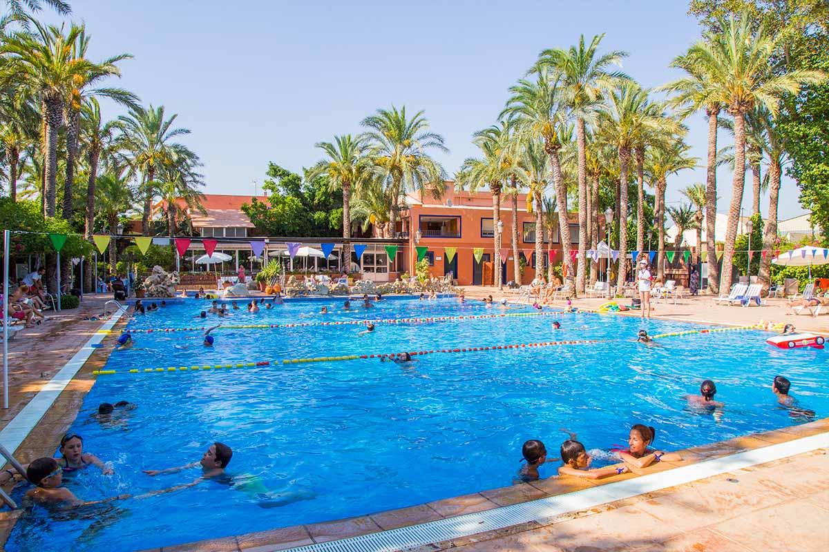 palmeras crevillent alicante camping piscina